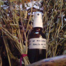Huile de massage de balsamite 50ml