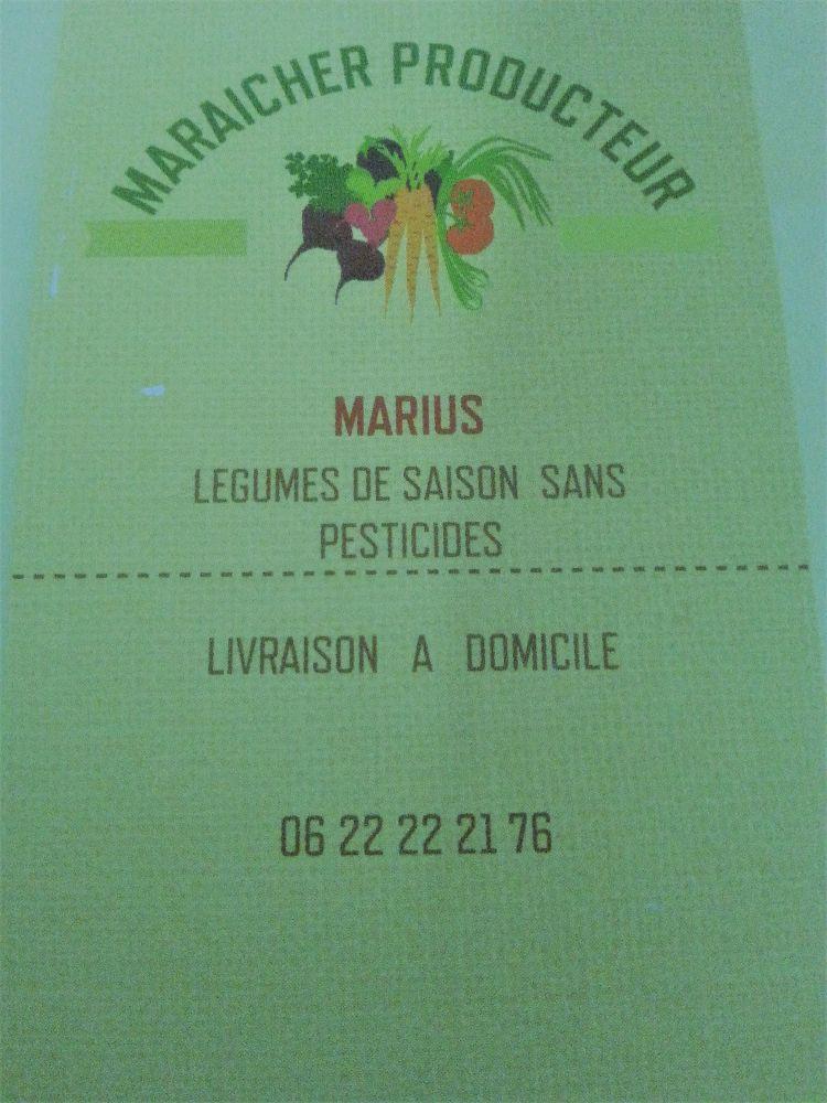 Salades sans pesticides