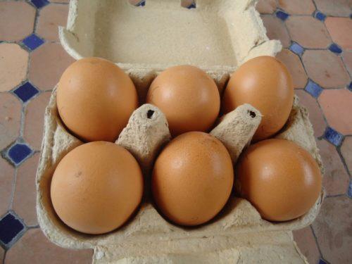 Oeufs de poules frais