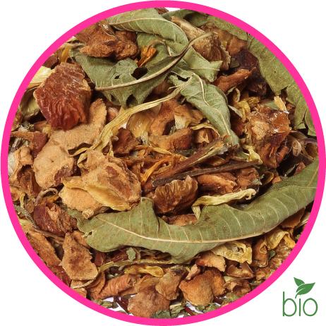 Tisane des elfes BIO : saveur agrumes - baies sauvages