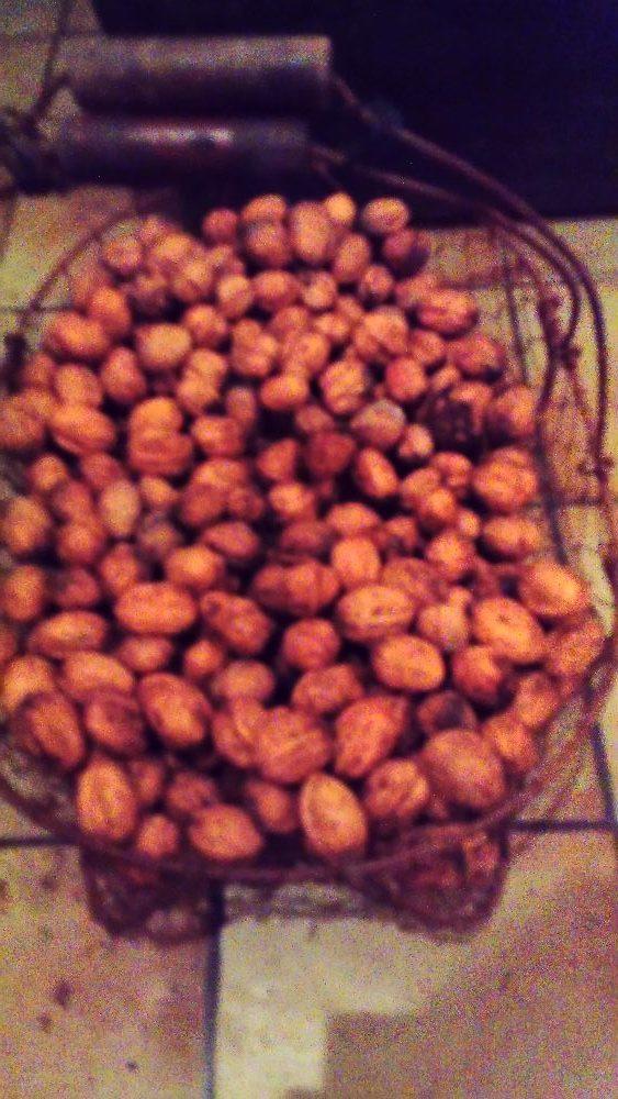 Coing, poire, noix