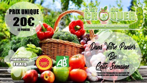 Panier fruit et légume bio de la semaine