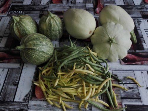 Légumes non traites