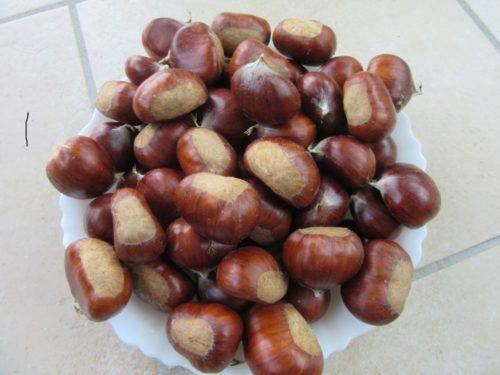Châtaignes greffer 2,50 € le kg